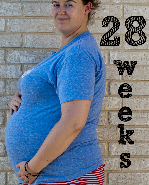 28 weeks SMALL