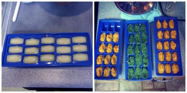 babyfood.icetrays