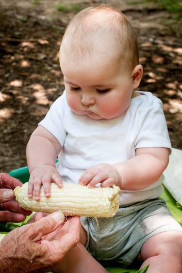 Kamden.Corn.SMALL-3