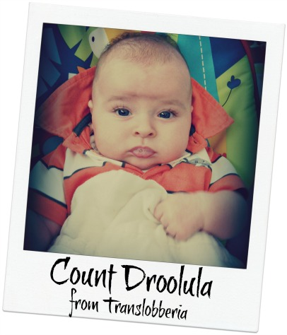 countdroolula.small