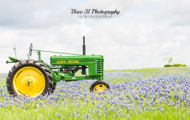 Ennis Bluebonnets 2015 WEB black mark-5